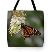 Butterfly #6 Tote Bag