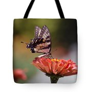 Butterfly And Orange Zinnia Tote Bag
