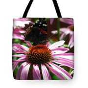 Butterfly And Pink Cone Flower Tote Bag