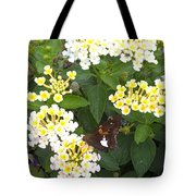 Butterfly And The Spider Tote Bag