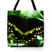 Butterfly Art 3 Tote Bag