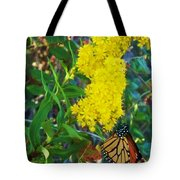 Butterfly At Cape May Nj Tote Bag