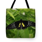 Butterfly Black And Yellow Tote Bag
