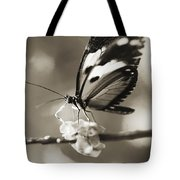 Butterfly Close-up Tote Bag