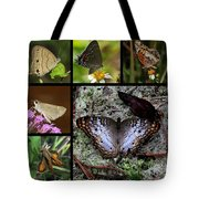 Butterfly Collage 1 Tote Bag