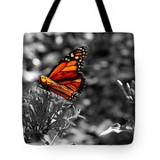 Butterfly Color On Black And White Tote Bag