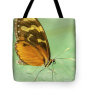 Butterfly Eueides Isabella Tote Bag