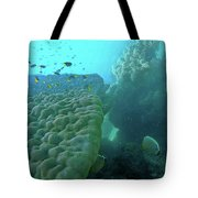 Butterfly Fish  Tote Bag by Debbie Cundy