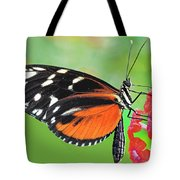 Butterfly  Golden Helicon Tote Bag