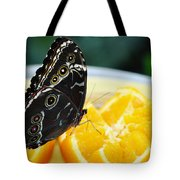 Butterfly Haven Citrus Tote Bag
