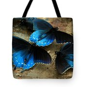 Butterfly Huddle At The Puddle Tote Bag