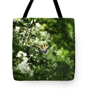 Butterfly In Muted Green Background Tote Bag