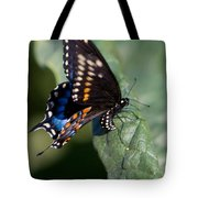 Butterfly Laying Eggs Tote Bag