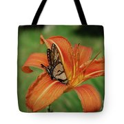Butterfly On A Blooming Orange Daylily Flower Blossom Tote Bag