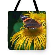 Butterfly On Chrysanthemum Flowers Tote Bag