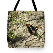 Butterfly On Cracked Ground Tote Bag