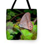 Butterfly On Geranium Leaf Tote Bag