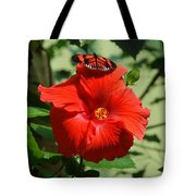 Butterfly On Hibiscus Tote Bag