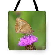 Butterfly On Knapweed Tote Bag