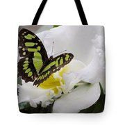 Butterfly On Orchid Tote Bag