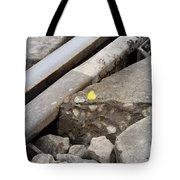 Butterfly On Railroad Tracks Tote Bag