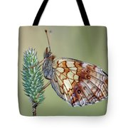 Butterfly On The Grass Tote Bag
