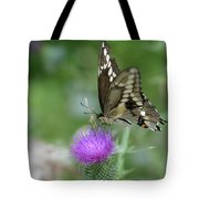 Butterfly On Thistle Flower Tote Bag