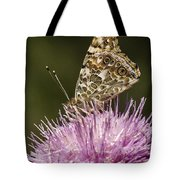 Butterfly On Thistle Tote Bag