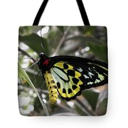 Butterfly One Tote Bag