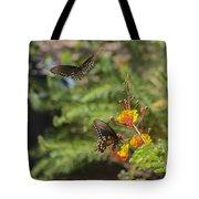 Butterfly Pas De Deux Tote Bag
