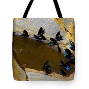 Butterfly Pool Tote Bag