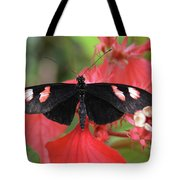Butterfly Blush Tote Bag