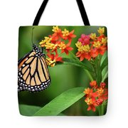 Butterfly Resting On Flower Tote Bag