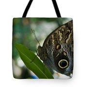 Butterfly Sitting Tote Bag
