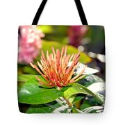 Butterfly Snack Tote Bag