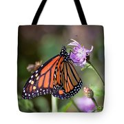Butterfly - The Monarch  Tote Bag