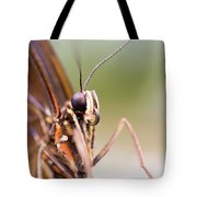 Butterfly Tongue Tote Bag