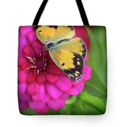 Butterfly Whispers Tote Bag