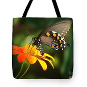 Butterfly With Orange Flower Tote Bag