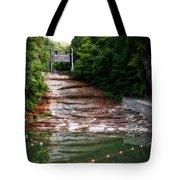 Buttermilk Falls State Park New York 02 Tote Bag