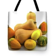 Butternut Squash With Gourds  Tote Bag