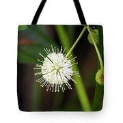 Button Bush Tote Bag
