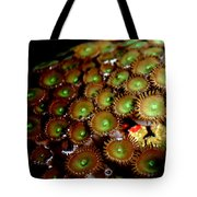 Button Polyps Tote Bag
