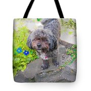 Buttons Magoo Tote Bag