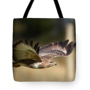 Buzzard In Flight Tote Bag