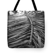 Bw Fallen Frond Tote Bag