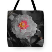 Bw Pink Rose Tote Bag