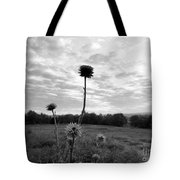 Bw Thistle  Tote Bag