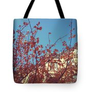 By The Autumn Tree 2 Tote Bag