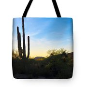 By The Vekol Wash Tote Bag
